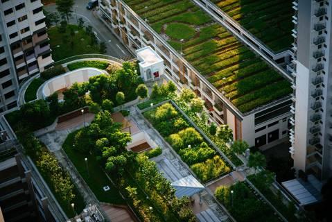 """""""The Green City Accord"""" la iniciativa de la UE para ciudades más verdes y saludables"""